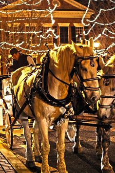Dahlonega 39 s winter wonderland and festivals getuwired for Dahlonega ga christmas 2017 schedule